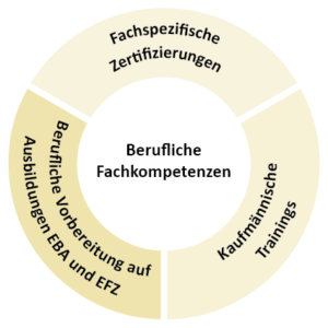 Grafik berufliche Kompetenzen